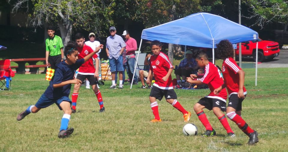 XOLOS ACADEMY AT WORK IN WEEK 4